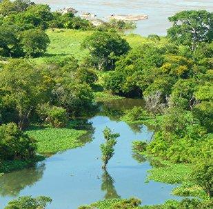 Naturaleza de Venezuela (imagen referencial)
