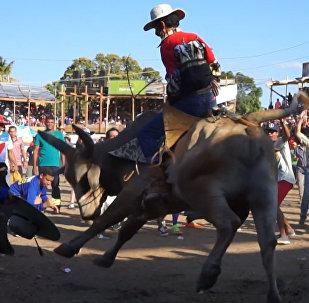 Una corrida de toros en Costa Rica