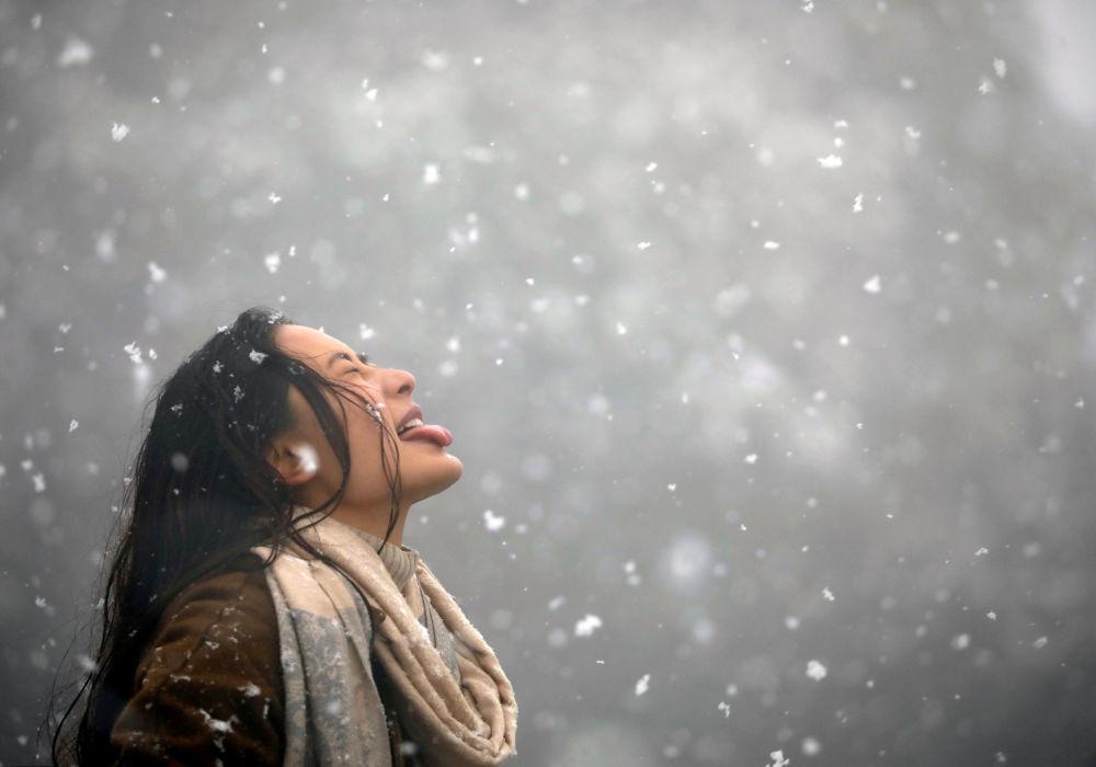 Tigres, modelos y mucha nieve: las fotos más destacadas de la semana
