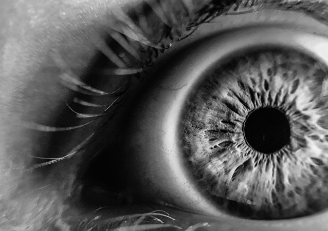 Un ojo (imagen referencial)