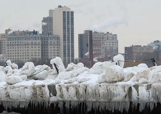 Los estragos causados por la ola de frío en EEUU