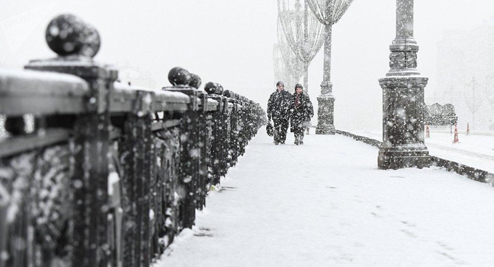Una nevada