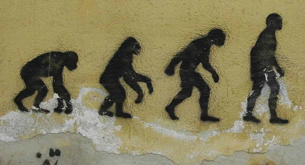 Evolución, imagen referencial