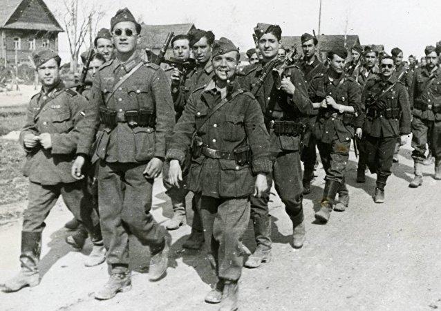 Voluntarios españoles: reemplazos para la División Azul