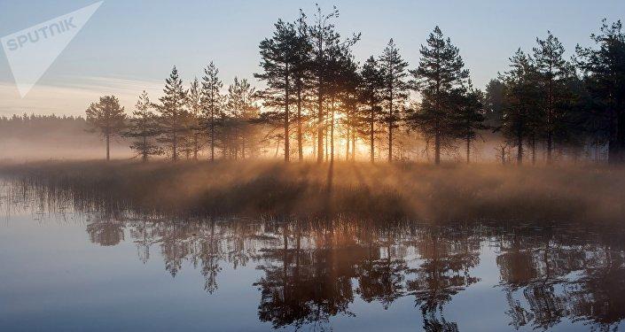 Un lago en la república de Carelia
