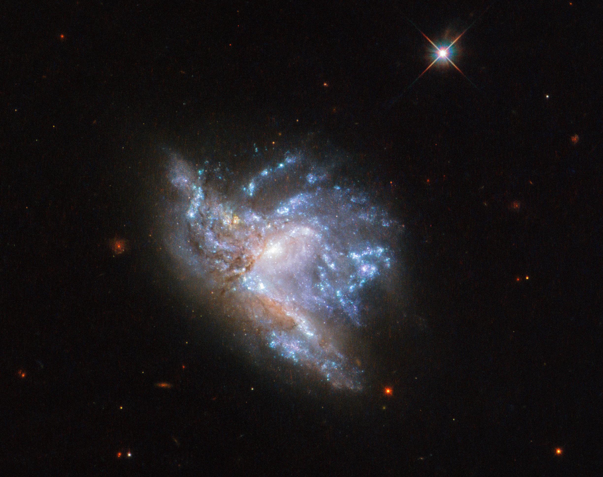 Andromina Significado una imagen impactante del telescopio hubble da más pistas