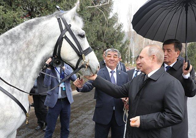 El presidente kirguís, Sooronbay Jeenbekov, le regala al presidente ruso, Vladímir Putin, un corcel