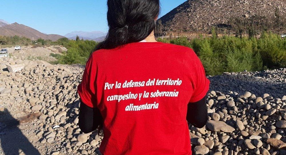 Resistencia civil en Salamanca, Chile, contra la minera Los Pelambres