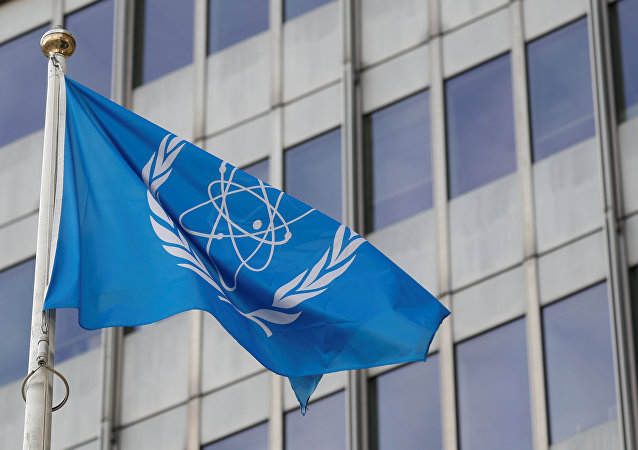 La bandera con el logo de la OIEA