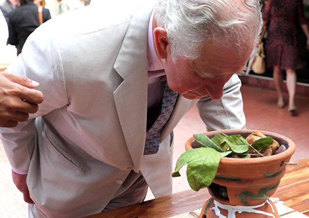 El príncipe Carlos en Cuba