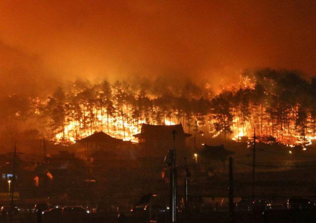 El incendio en noreste de Corea del Sur