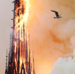 Arde Notre Dame