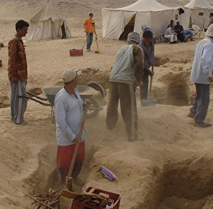 Excavaciones de una antigua necrópolis en el oasis de Fayún, Egipto
