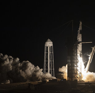 El lanzamiento del cohete Falcon 9 con Crew Dragon a bordo (archivo)