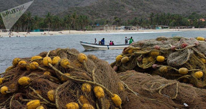 Comer a diario pescado e intercambiarlo por productos de primera necesidad se ha convertido en la opción de los pobladores de Chuao