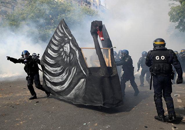 Cisne negro en las calles de París durante las protestas de los 'chalecos amarillos'