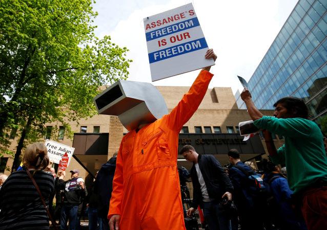Protestas a favor del fundador de WikiLeaks, Julian Assange