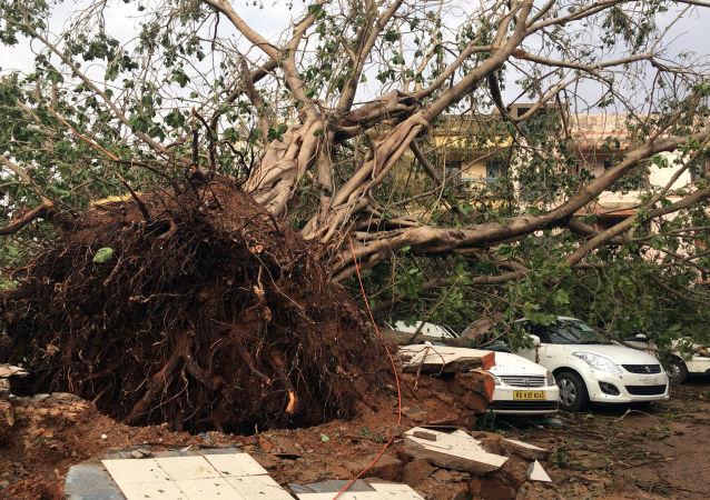 Las consecuencias del ciclón Fani en la India