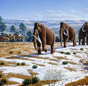 Un paisaje del Pleistoceno tardío en el norte de España (ilustración)