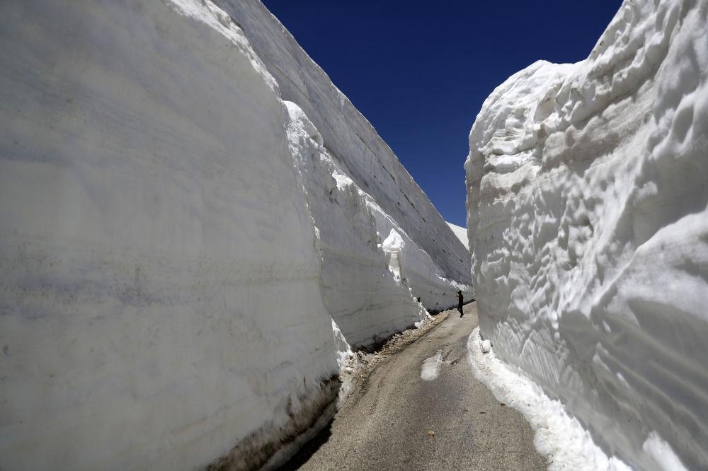 El Everest, presidentes y queso: estas son las imágenes de la semana