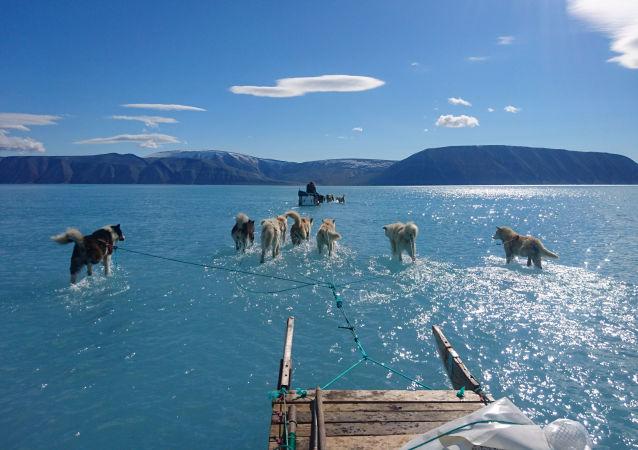 La foto tomada por el climatólogo Steffen M.Olsen durante una misión de rutina en el noroeste de Groenlandia