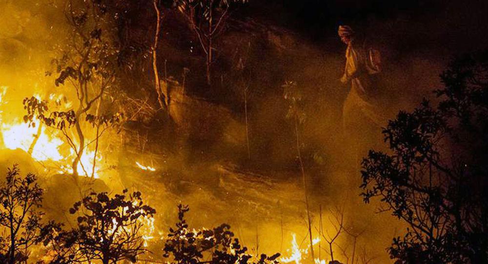 Amazonía En Llamas El Incendio En La Selva Brasileña Causa