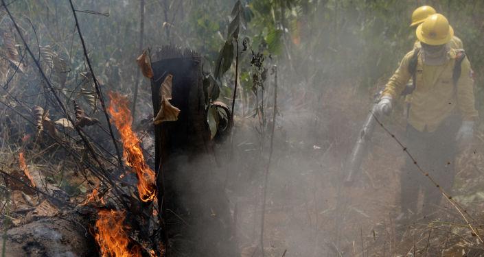 Bomberos apagando un incendio en la Amazonía brasileña