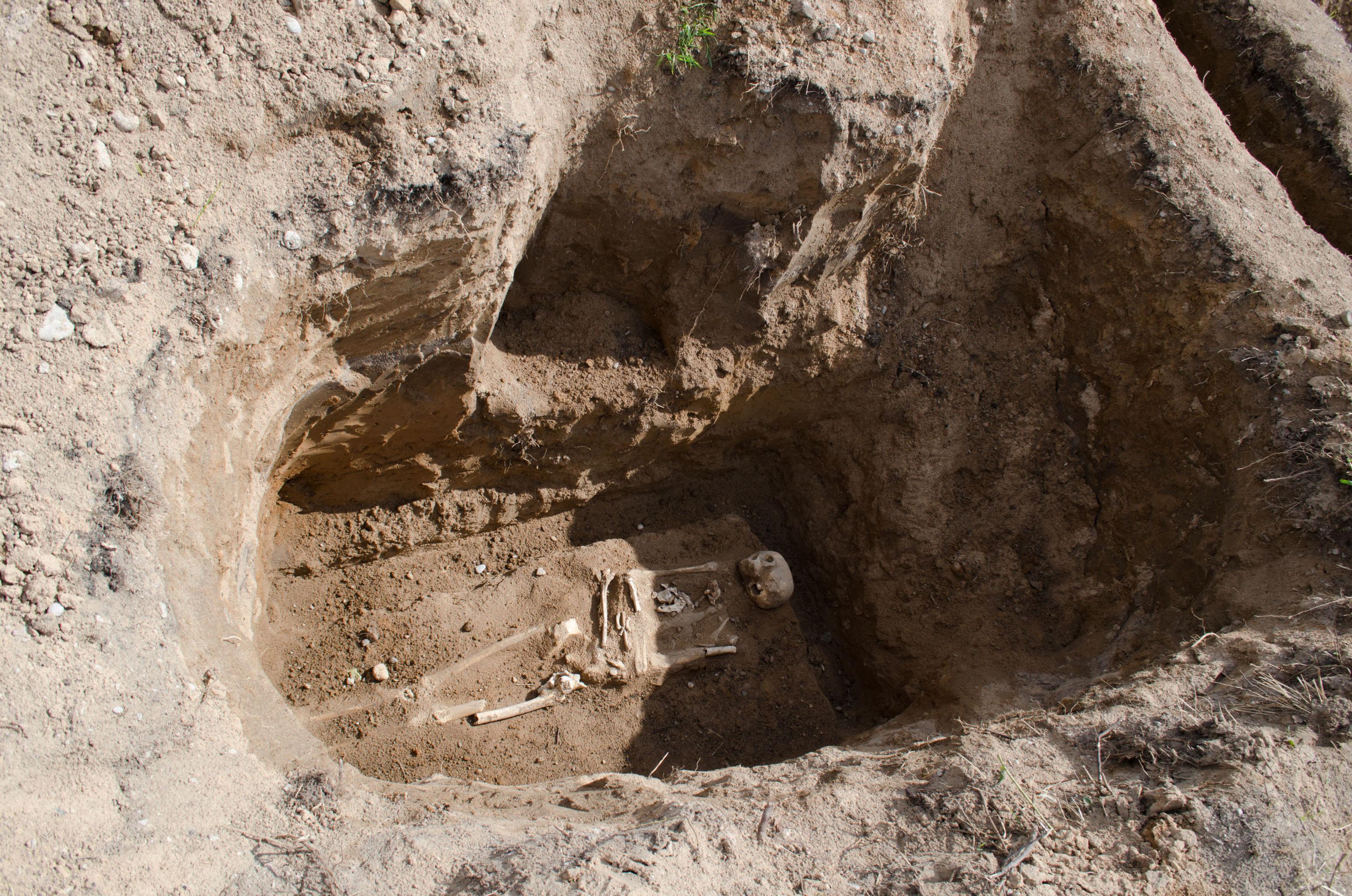 El esqueleto de una de las víctimas de los represores pronazis en Zhestianaya Gorka