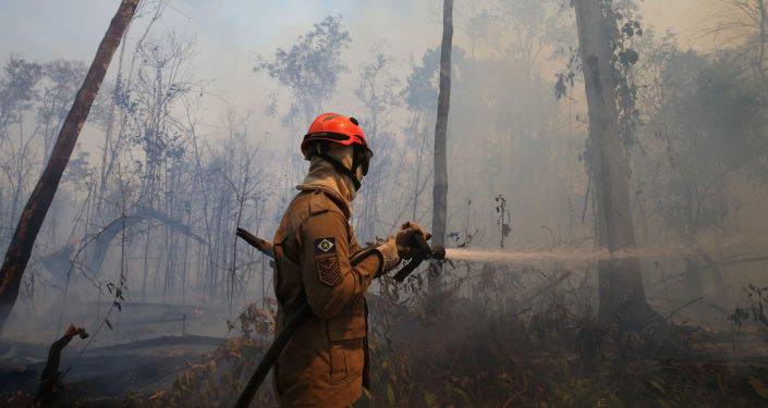 Un bombero apaga incendios en Amazonía