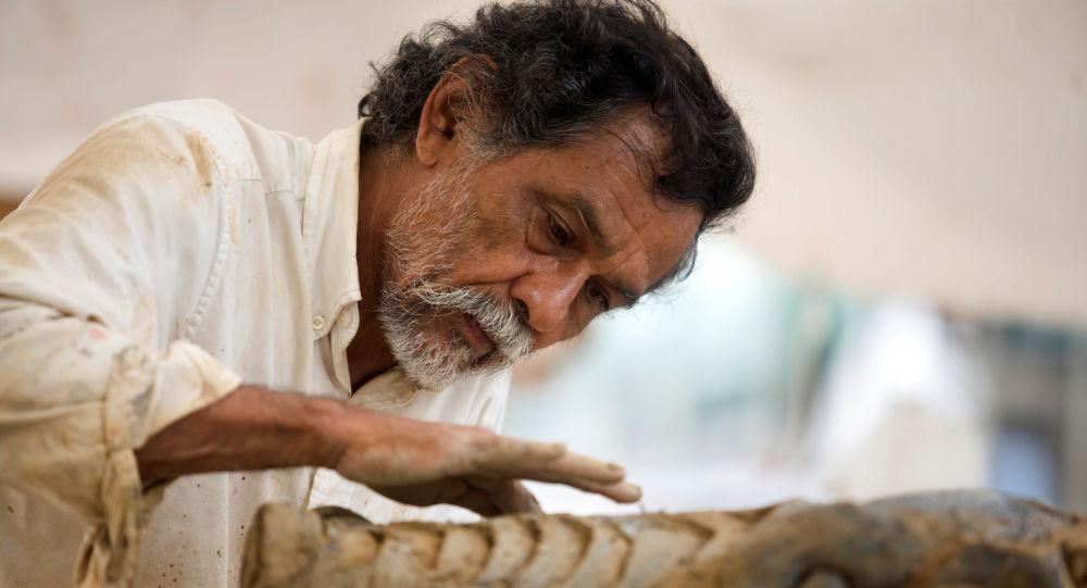 El artista plástico, Francisco Toledo