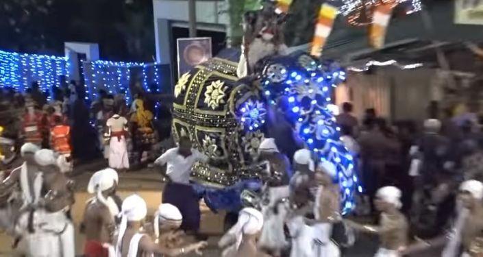 Un elefante pisotea a la multitud y deja numerosos heridos en Sri Lanka (fuertes imágenes)