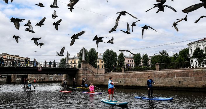 Palomas sobrevuelan San Petersburgo