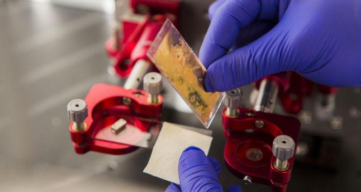 La instalación del sustrato de colágeno para la impresión de células