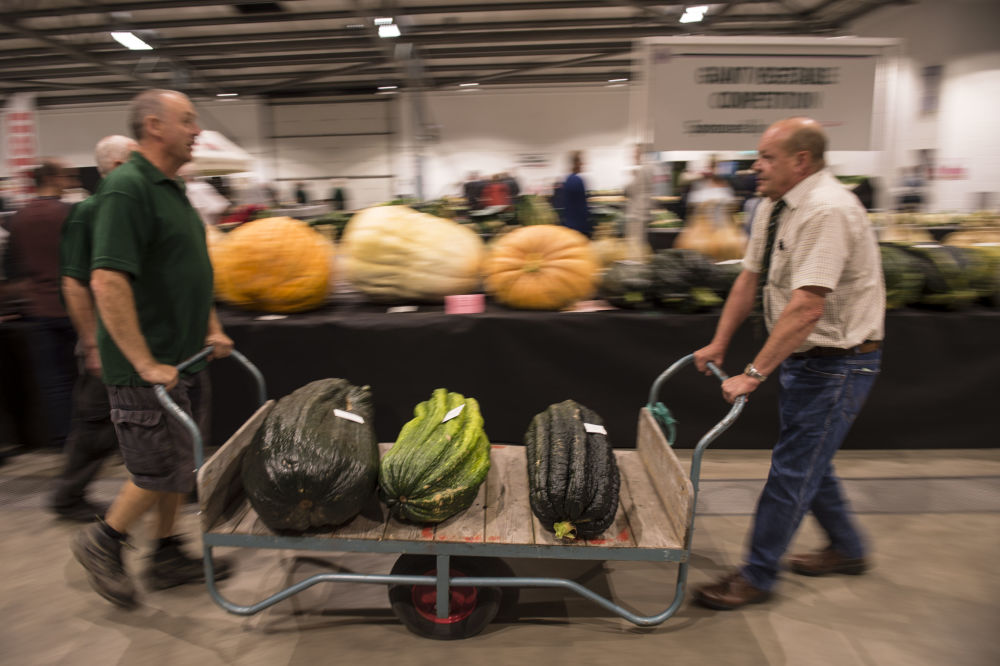 El tamaño sí importa: estas verduras gigantes te dejarán boquiabierto