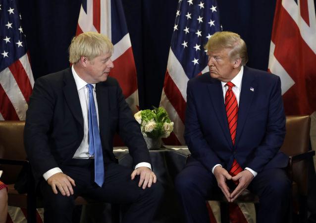 El presidente de Estados Unidos, Donald Trump, y el primer ministro del Reino Unido, Boris Johnson