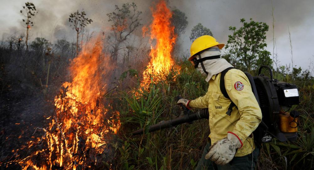 Bomberos brasileños luchan contra los incendios forestales en Amazonía