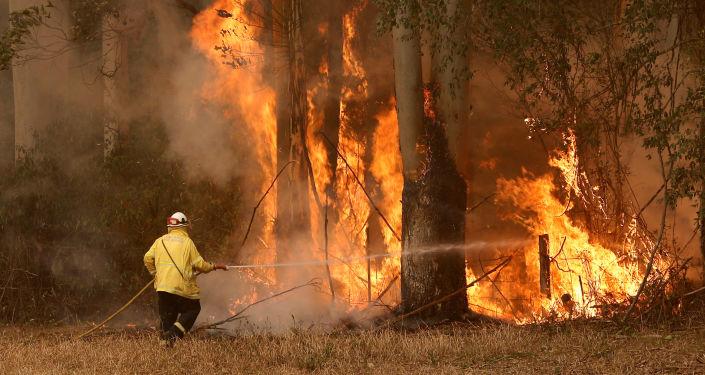 Bomberos intentan apagar incendios forestales en Australia