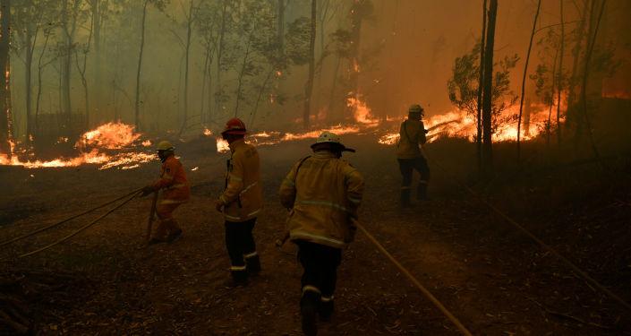 Bomberos intentan apagar un incendio forestal en Sydney, Australia