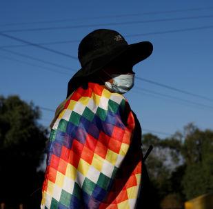 Un manifestante a favor de Evo Morales con una Whipala