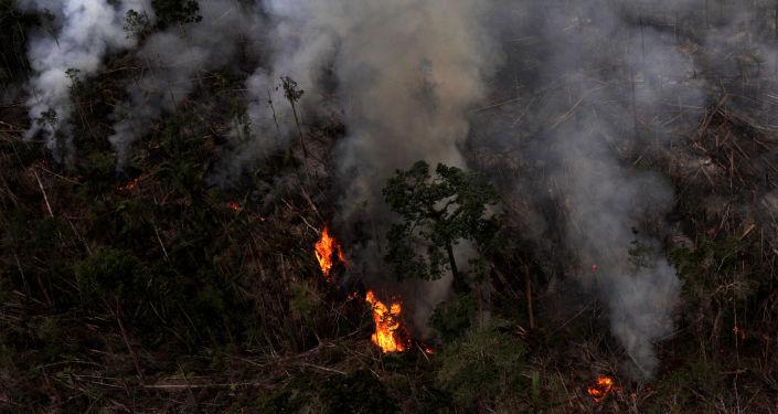Incendio forestal en la Amazonía brasilena