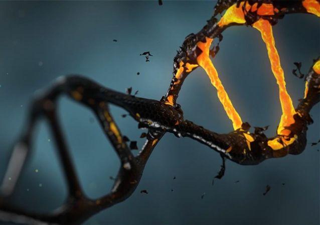 El ADN, imagen referencial