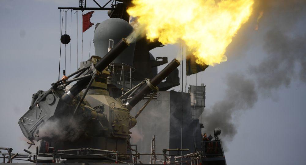 Los cañones del sistema de defensa antiaérea Palash