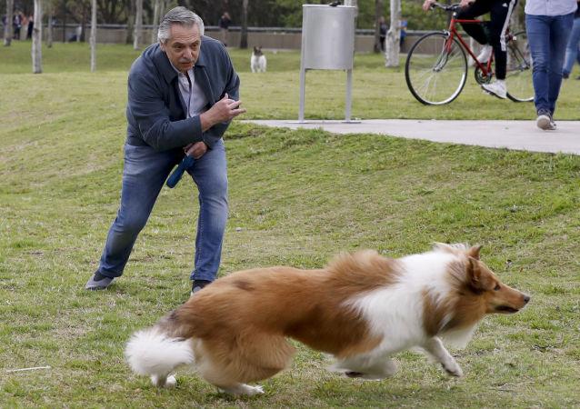 El presidente argentino Alberto Fernández juega con su perro Dylan