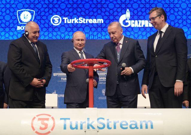 El primer ministro búlgaro, Boiko Borisov; el presidente de Rusia, Vladímir Putin; el presidente turco, Recep Tayyip Erdogan; y el presidente serbio, Aleksandar Vucic