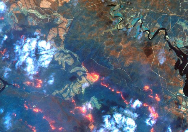 Una imagen satelital de los incendios en Australia