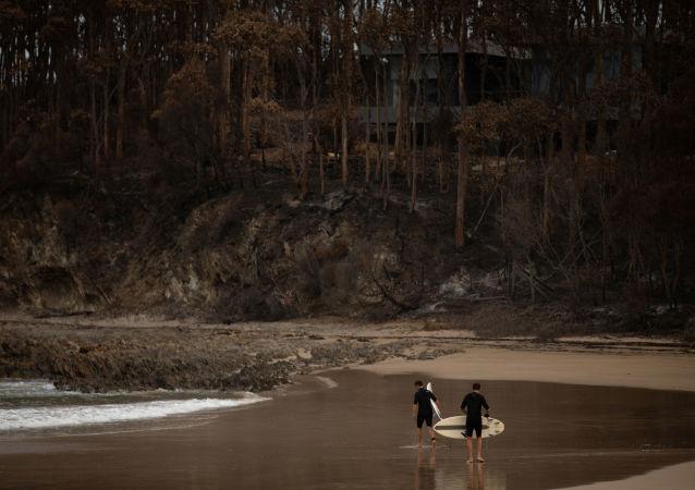 Consecuencias de los incendios forestales en Australia