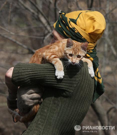 Жительница поселка Кипарисово Зоя Андрющенко заботится о 250-ти бездомных животных