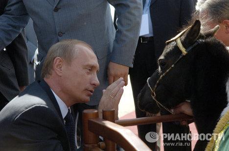 Президент России Владимир Путин с мини-лошадкой по имени Вадик