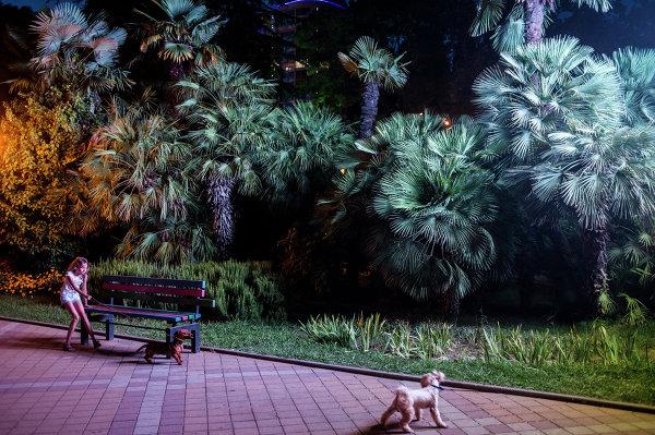 Девочка гуляет с собакой на одной из улиц города Сочи