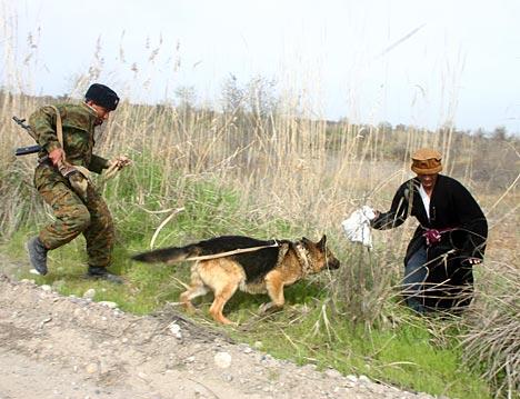 Los perros adiestrados, un arma eficaz de los guardias fronterizos.